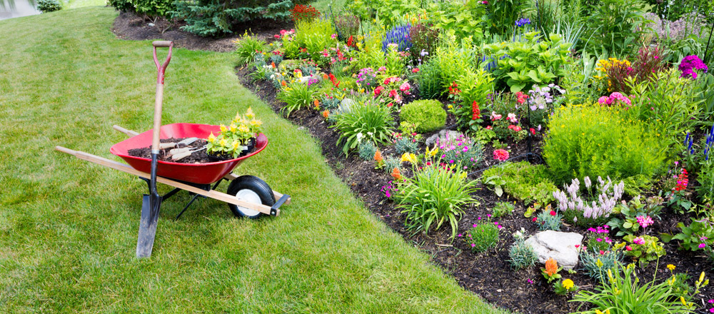 Gardening business for Newbury, Hungerford, Thatcham