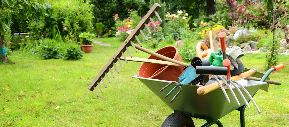 garden services newbury - Garden Mainenance