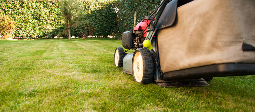 Grass Cutting Services Newbury, Berkshire | Mowing and Lawn Care ...
