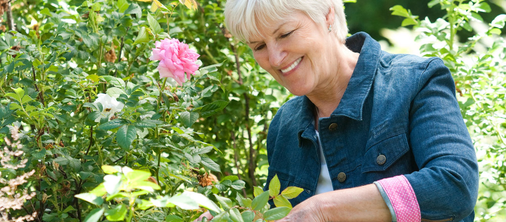 Reviews of gardeners in Berkshire