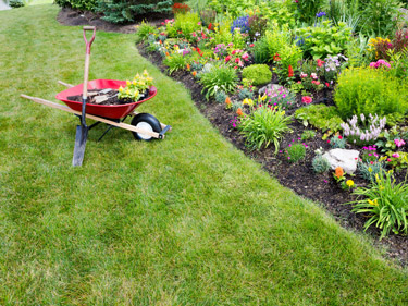 Reliable Berkshire gardener - Newbury, Hungerford, Thatcham